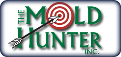 The Mold Hunter